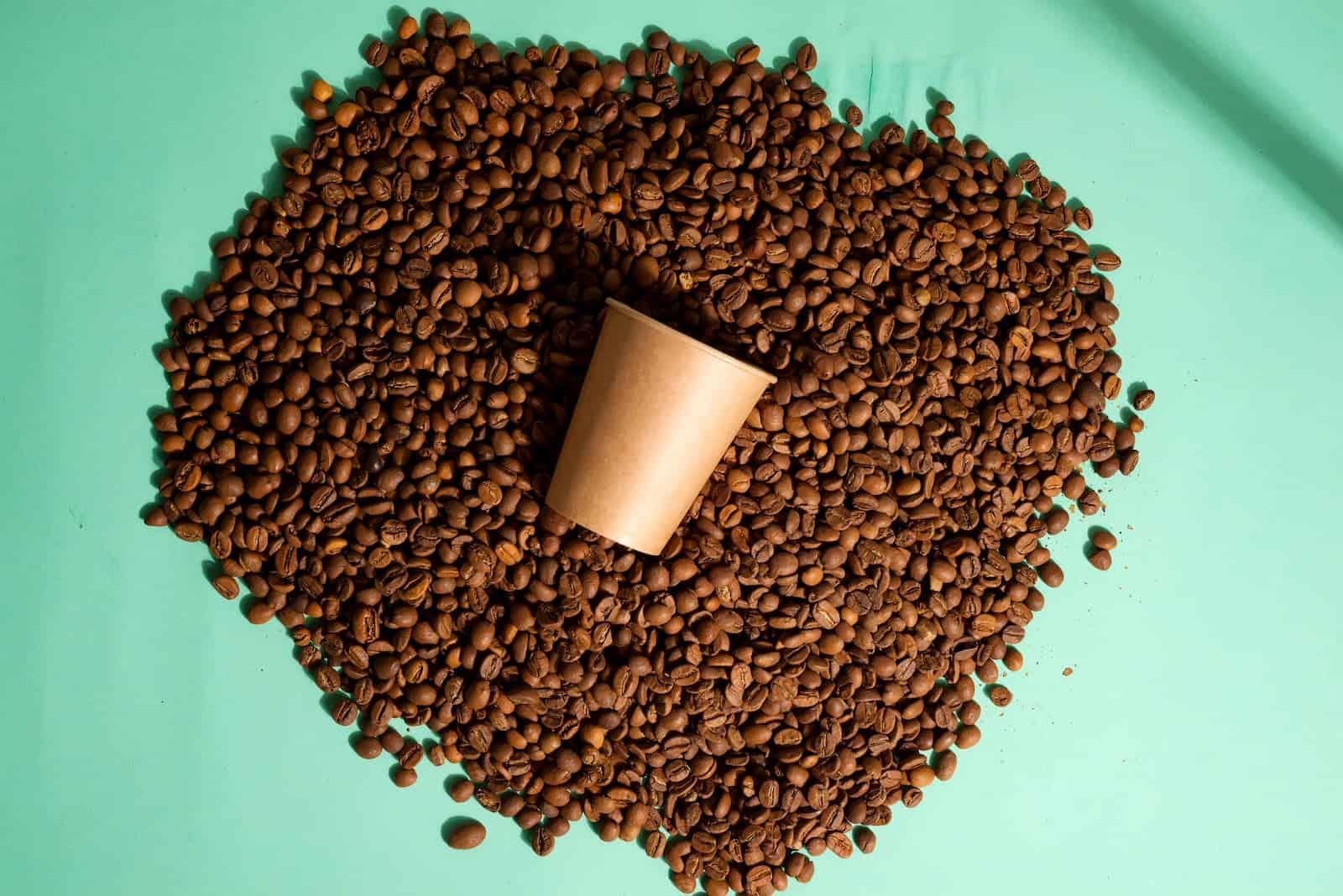 separando os grãos de café