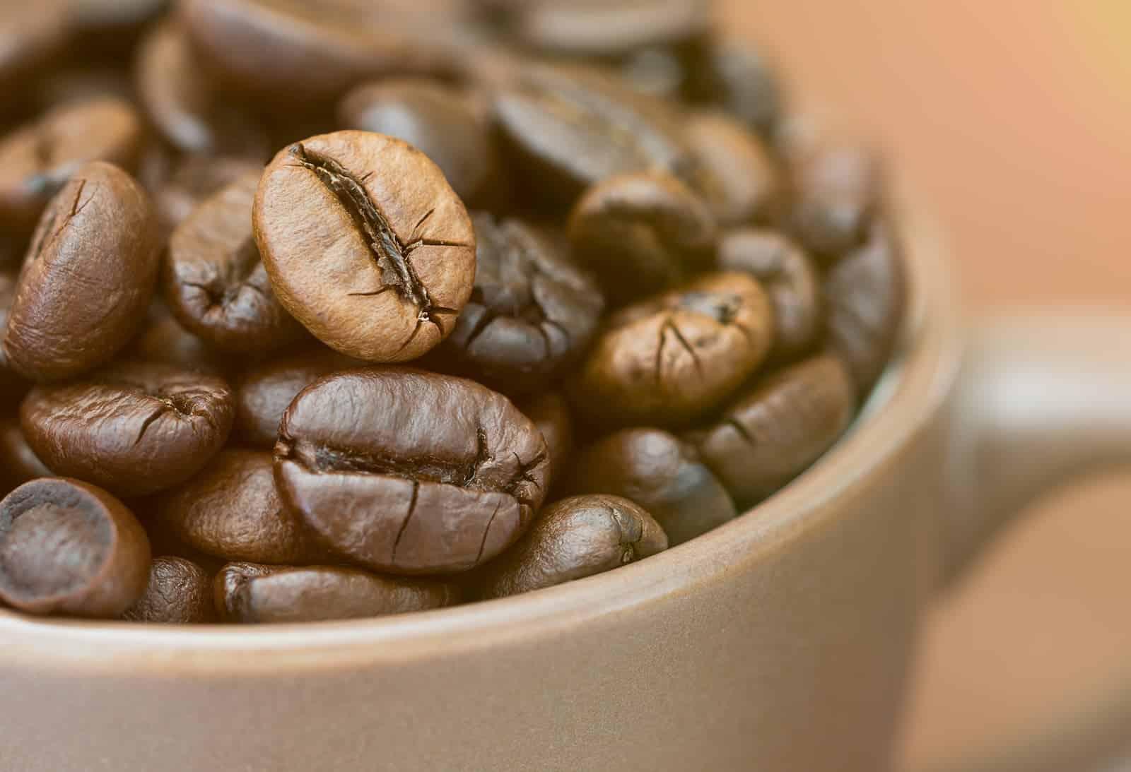 escolhendo os grãos do cafézinho