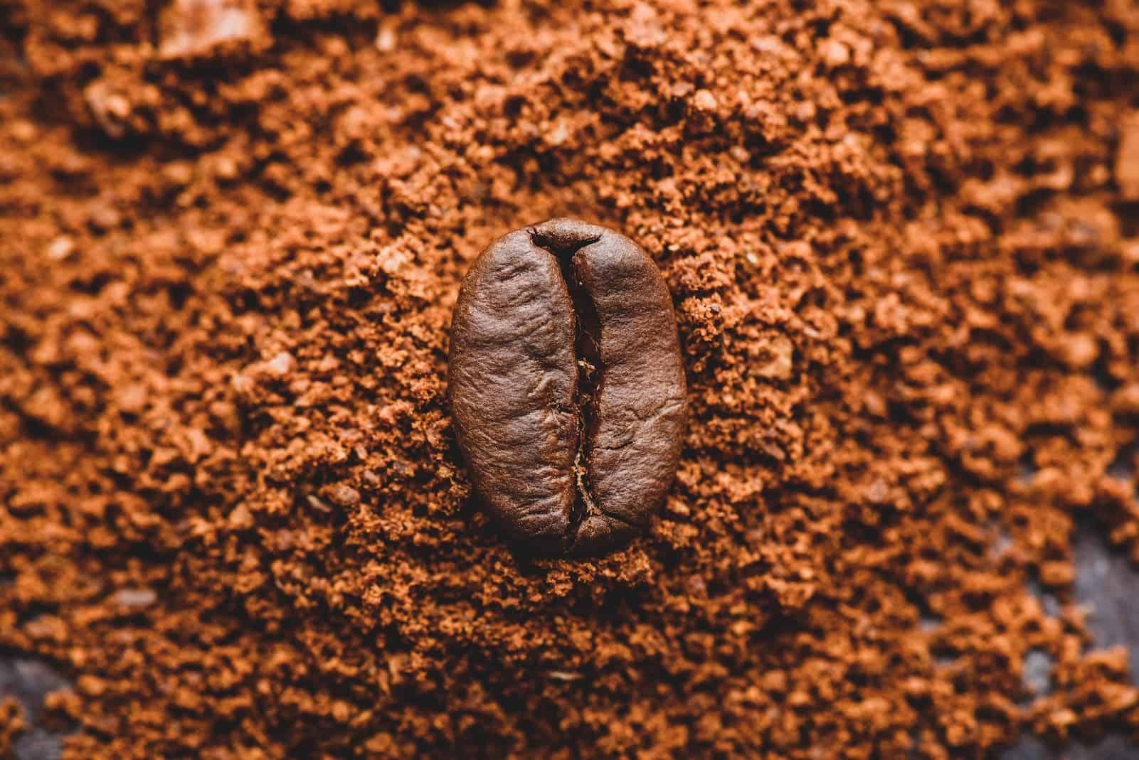 grãos de café moídos