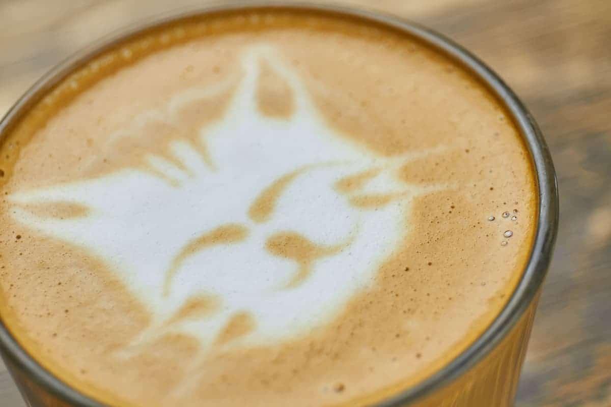 desenho feito na espuma de café